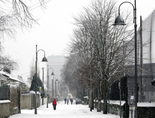 The Mardyke  Cork in Winter